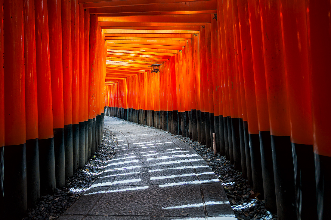 Fushimi Inari's 1000's of torii gates and paths through the forest and hills
