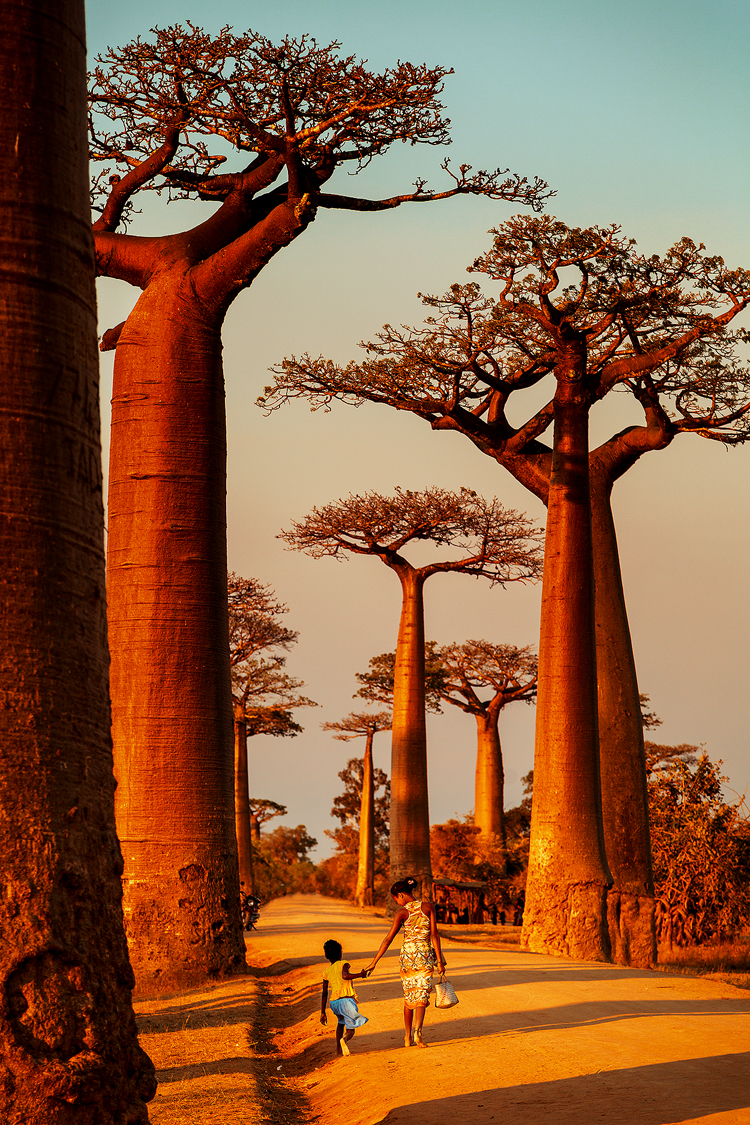 A mother and daughter walk hand in hand along the Avenue of Baobabs