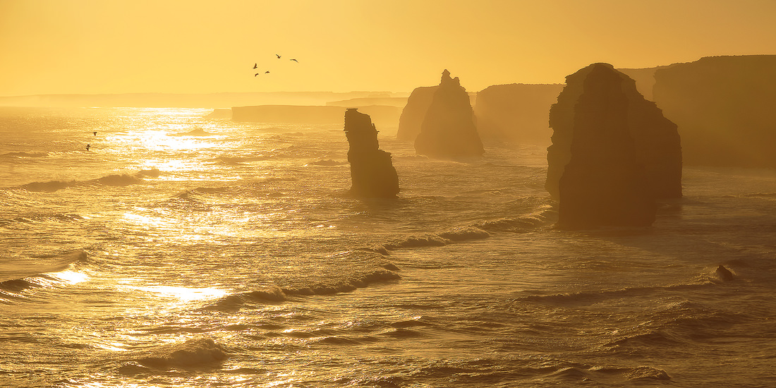 A golden sunset at the 12 Apostles on the Great Ocean Road