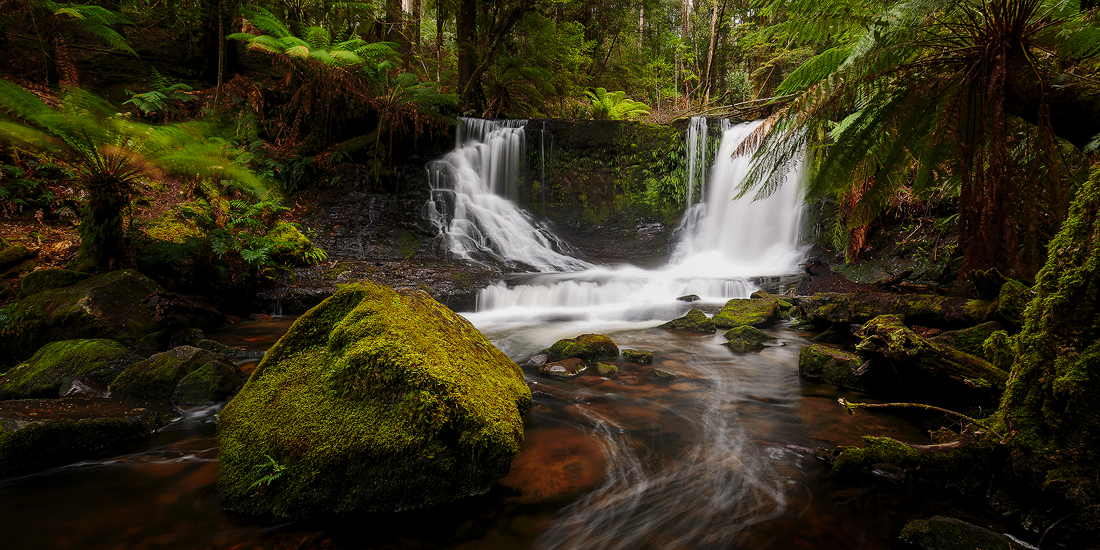 The lush landscape of Horseshoe Falls in Tasmania