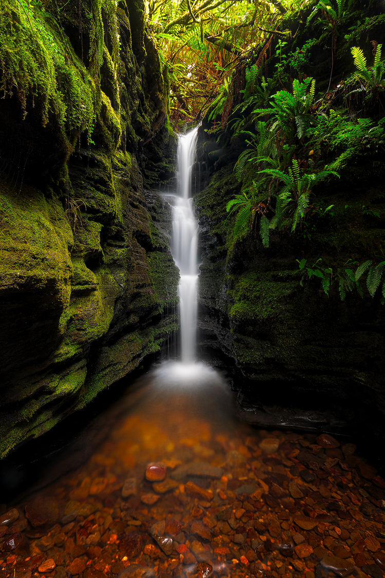 A small but memorable waterfall in the middle of Hobart